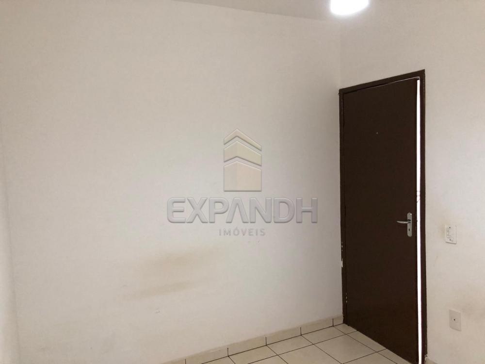 Alugar Apartamentos / Padrão em Sertãozinho R$ 600,00 - Foto 9