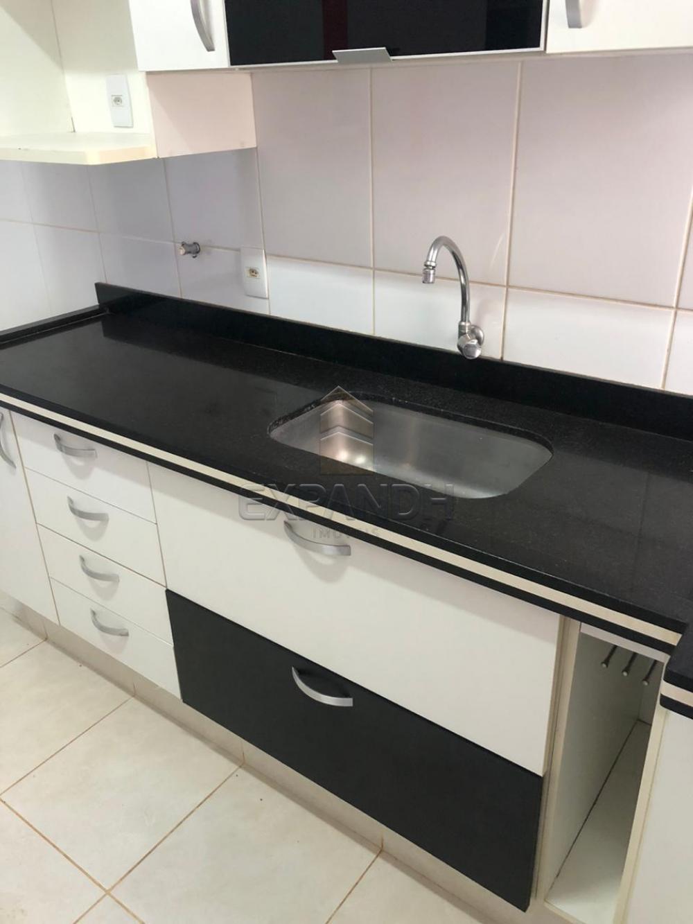 Alugar Casas / Padrão em Sertãozinho R$ 1.250,00 - Foto 13