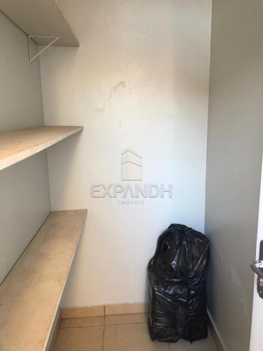 Alugar Casas / Padrão em Sertãozinho R$ 1.250,00 - Foto 28