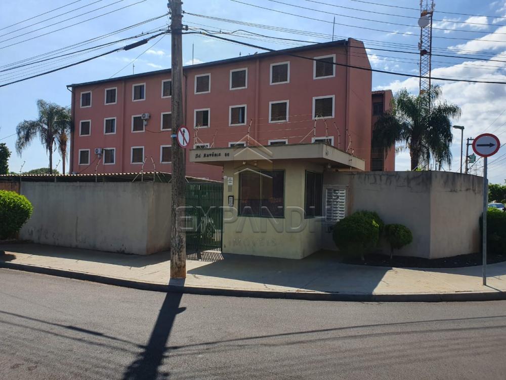 Alugar Apartamentos / Padrão em Sertãozinho apenas R$ 550,00 - Foto 1