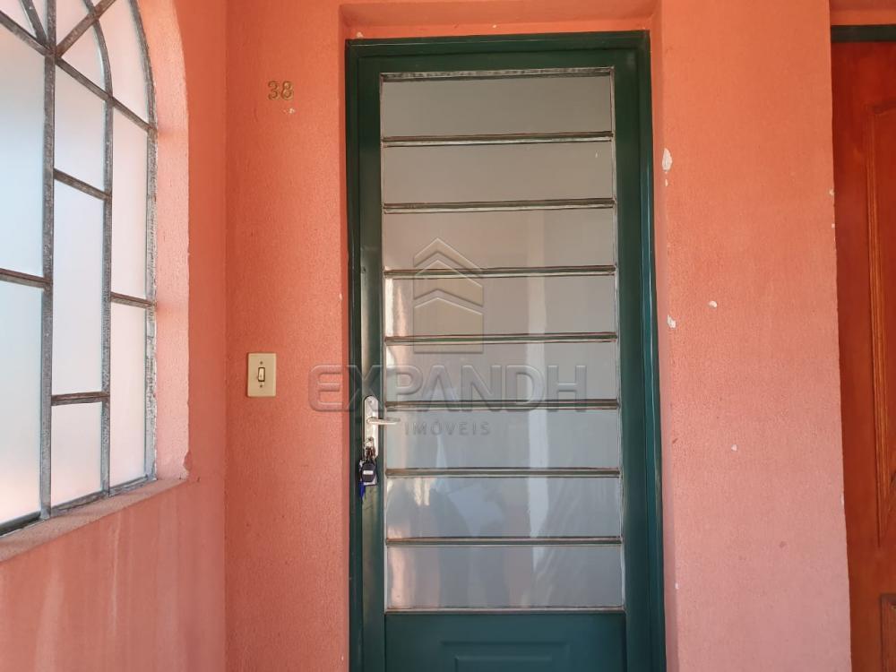 Alugar Apartamentos / Padrão em Sertãozinho apenas R$ 550,00 - Foto 4