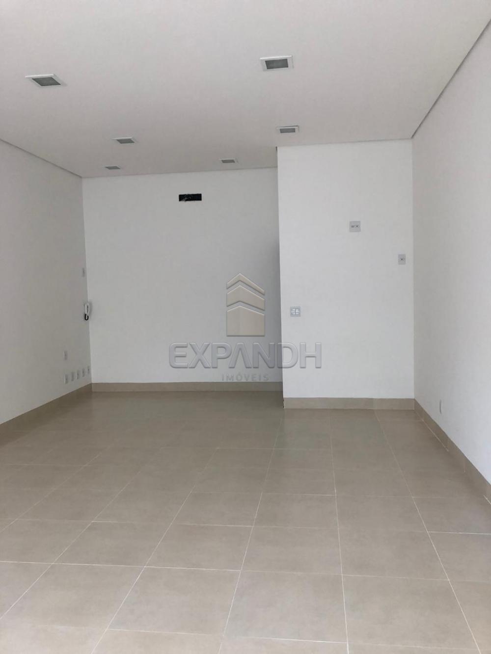 Alugar Comerciais / Sala em Sertãozinho apenas R$ 1.600,00 - Foto 2