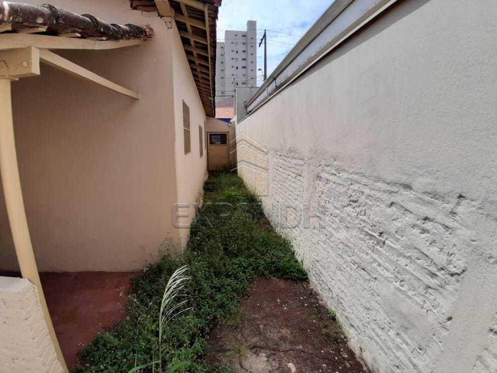 Alugar Casas / Padrão em Sertãozinho R$ 835,00 - Foto 22