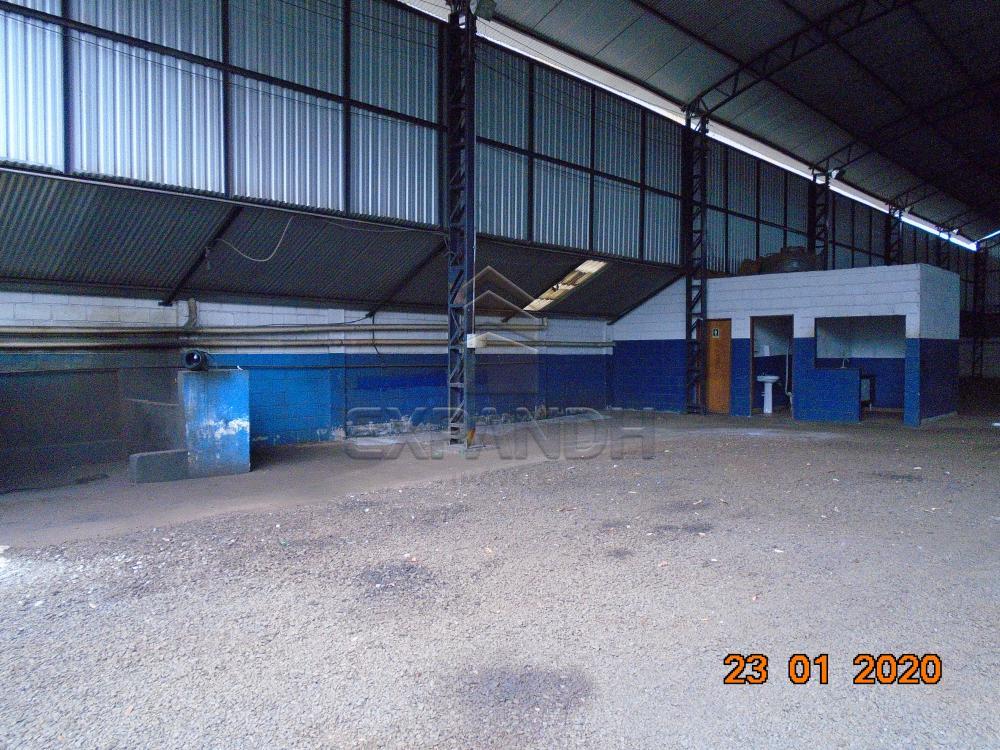 Alugar Comerciais / Galpão em Sertãozinho apenas R$ 6.000,00 - Foto 6
