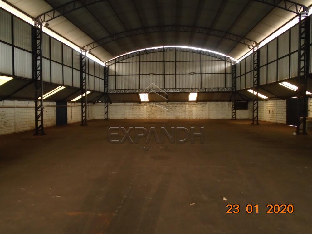 Alugar Comerciais / Galpão em Sertãozinho apenas R$ 6.000,00 - Foto 9