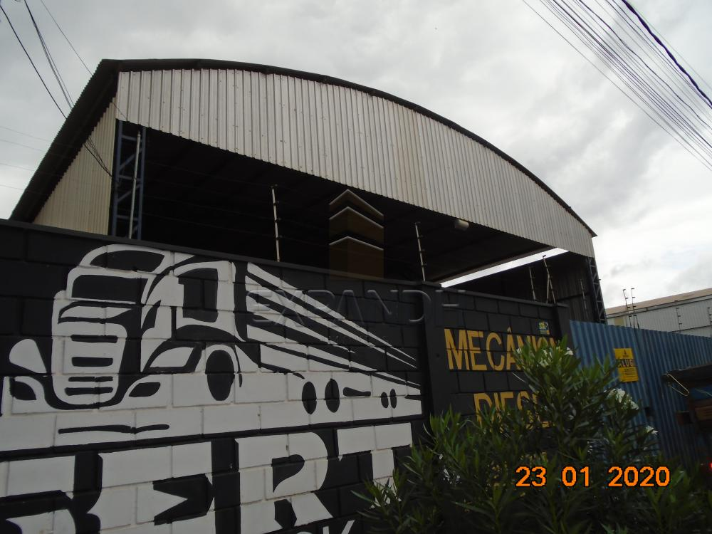 Alugar Comerciais / Galpão em Sertãozinho apenas R$ 6.000,00 - Foto 1