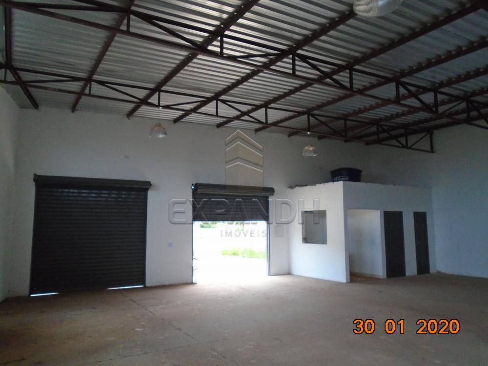 Alugar Comerciais / Galpão em Sertãozinho apenas R$ 1.650,00 - Foto 12