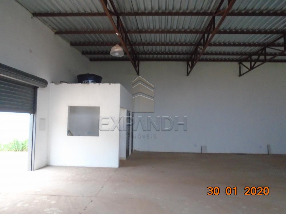 Alugar Comerciais / Galpão em Sertãozinho apenas R$ 1.650,00 - Foto 11