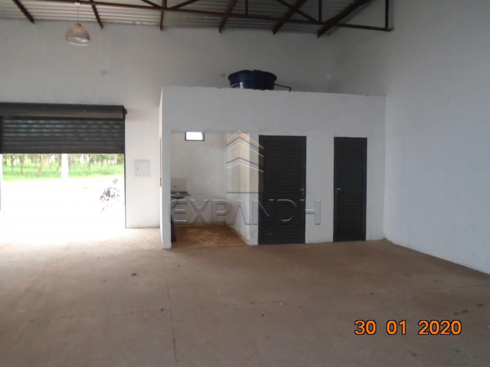 Alugar Comerciais / Galpão em Sertãozinho apenas R$ 1.650,00 - Foto 9