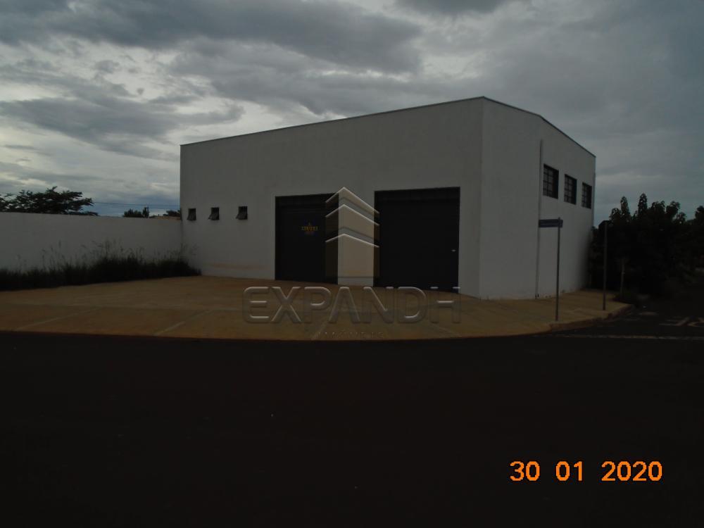 Alugar Comerciais / Galpão em Sertãozinho apenas R$ 1.650,00 - Foto 3