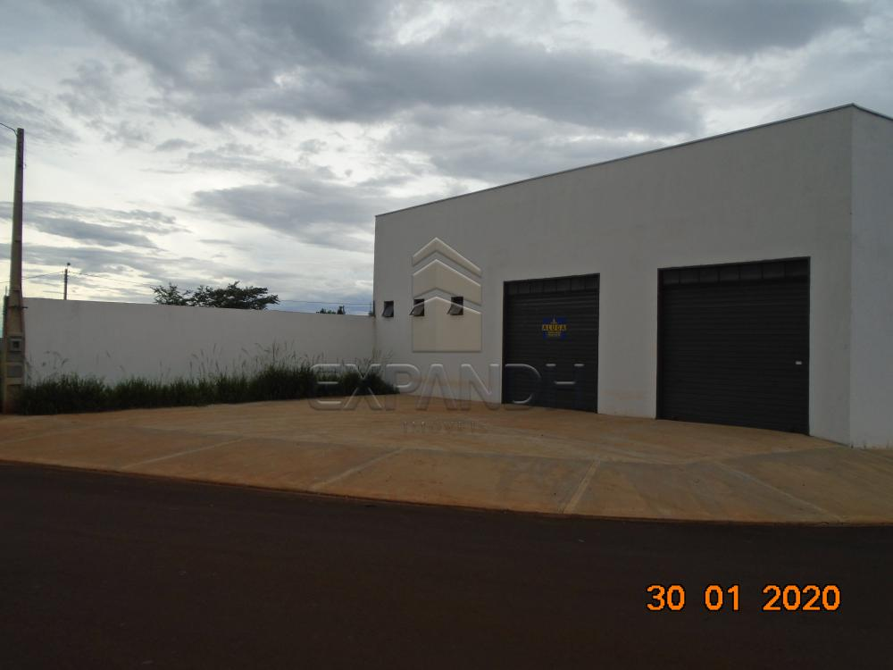 Alugar Comerciais / Galpão em Sertãozinho apenas R$ 1.650,00 - Foto 2