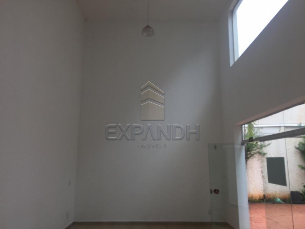 Alugar Comerciais / Sala em Sertãozinho apenas R$ 1.500,00 - Foto 2