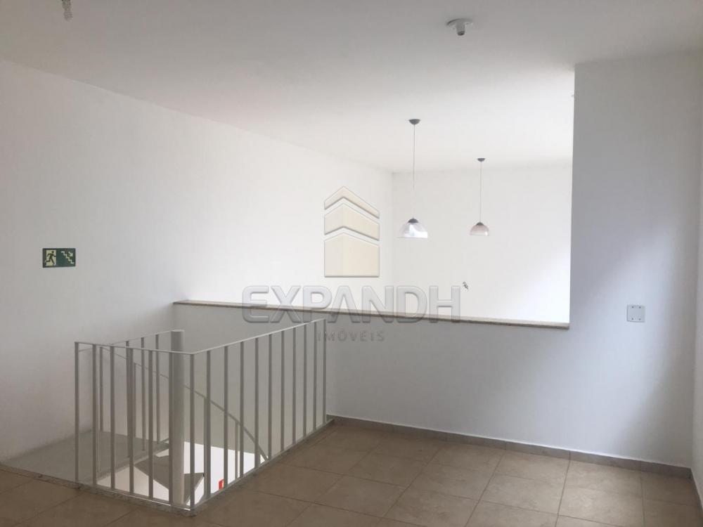 Alugar Comerciais / Sala em Sertãozinho apenas R$ 1.500,00 - Foto 8