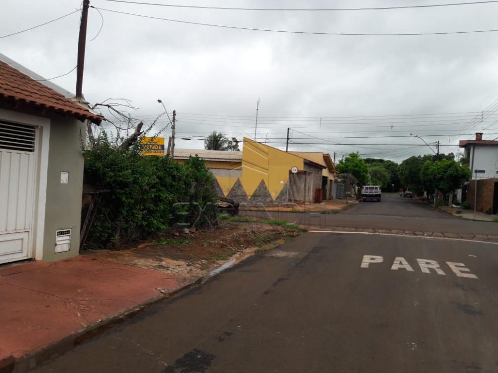 Comprar Terrenos / Padrão em Sertãozinho apenas R$ 95.000,00 - Foto 3