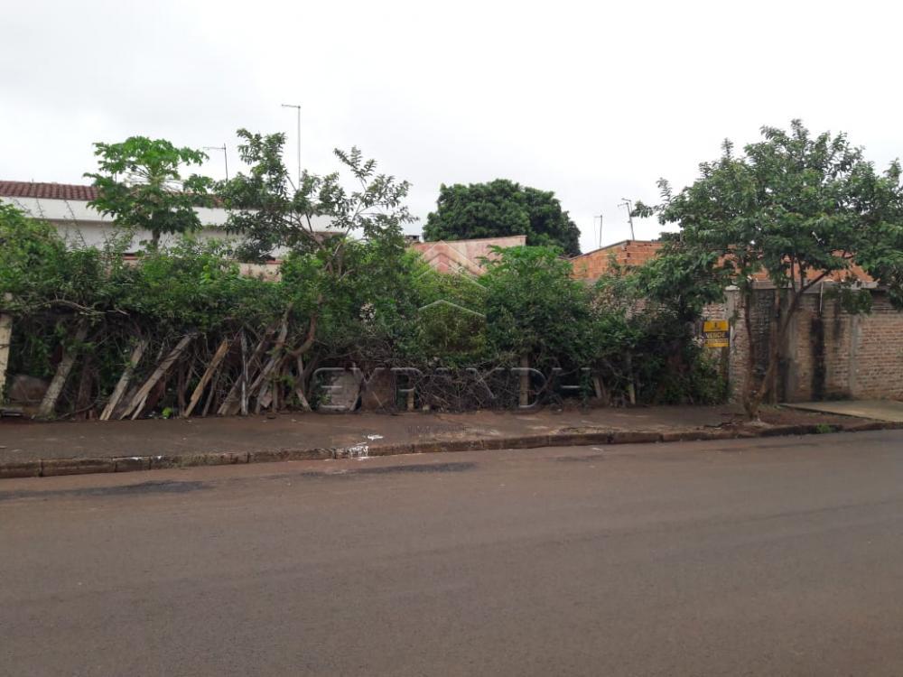 Comprar Terrenos / Padrão em Sertãozinho apenas R$ 95.000,00 - Foto 4
