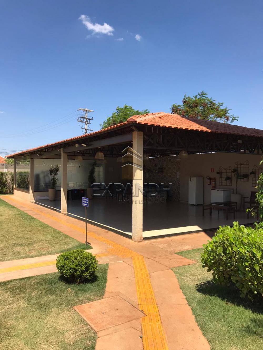 Alugar Apartamentos / Padrão em Sertãozinho apenas R$ 850,00 - Foto 3