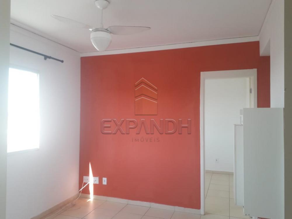 Alugar Apartamentos / Padrão em Sertãozinho apenas R$ 850,00 - Foto 7
