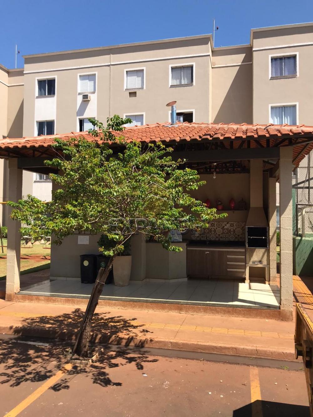 Alugar Apartamentos / Padrão em Sertãozinho apenas R$ 850,00 - Foto 6