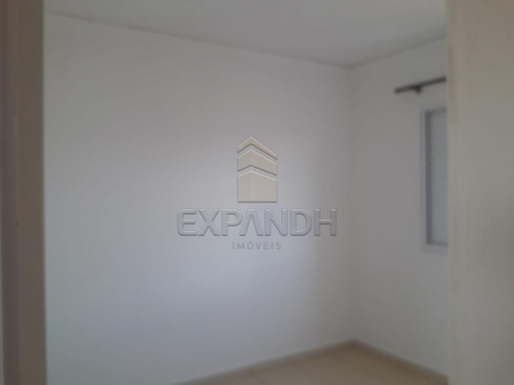 Alugar Apartamentos / Padrão em Sertãozinho apenas R$ 850,00 - Foto 15