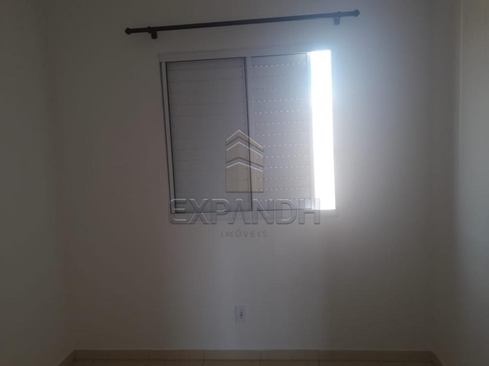 Alugar Apartamentos / Padrão em Sertãozinho apenas R$ 850,00 - Foto 16