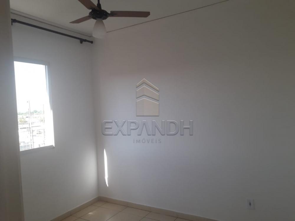 Alugar Apartamentos / Padrão em Sertãozinho apenas R$ 850,00 - Foto 17