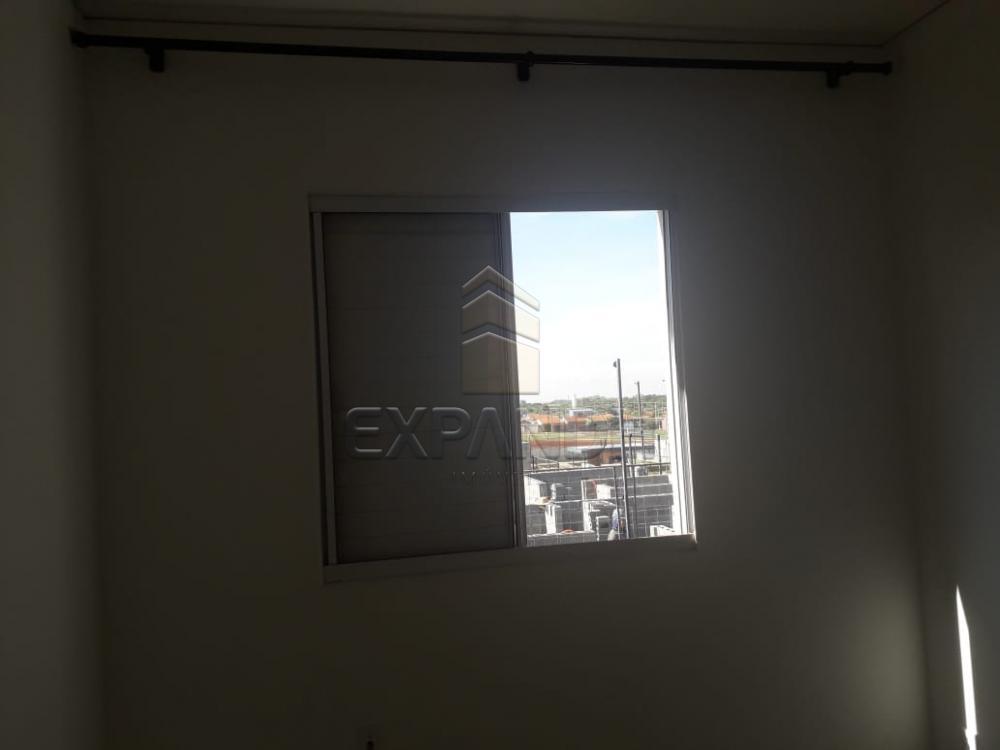 Alugar Apartamentos / Padrão em Sertãozinho apenas R$ 850,00 - Foto 18