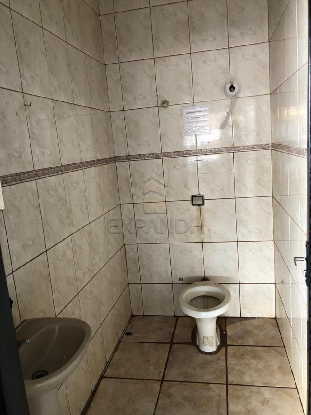 Alugar Comerciais / Salão em Sertãozinho R$ 3.200,00 - Foto 8