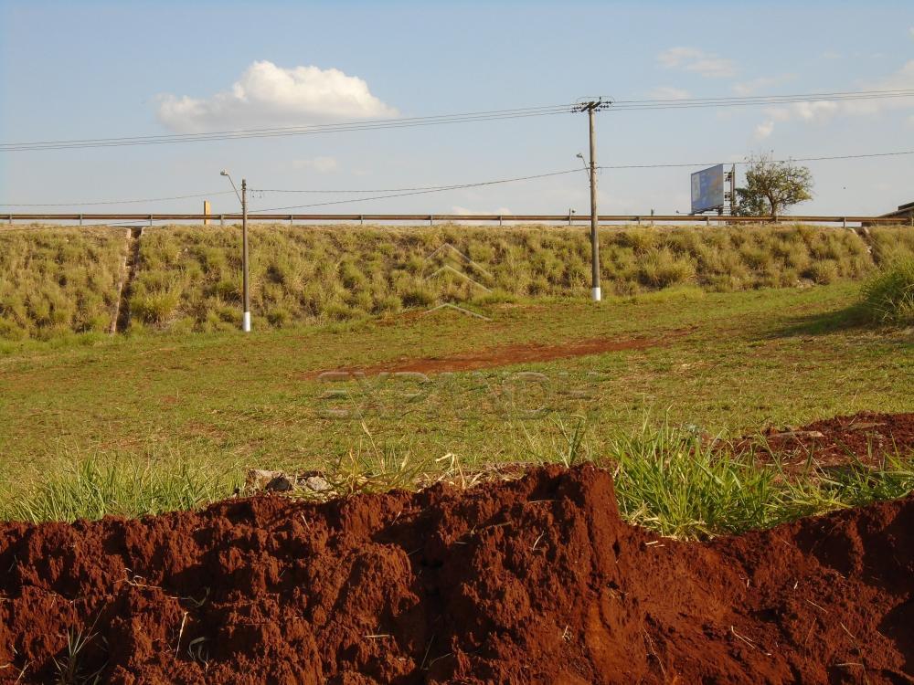 Comprar Terrenos / Padrão em Sertãozinho R$ 3.390.000,00 - Foto 1