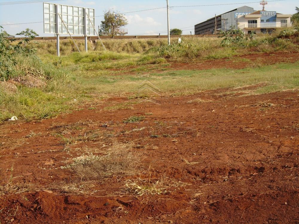 Comprar Terrenos / Padrão em Sertãozinho R$ 3.390.000,00 - Foto 2