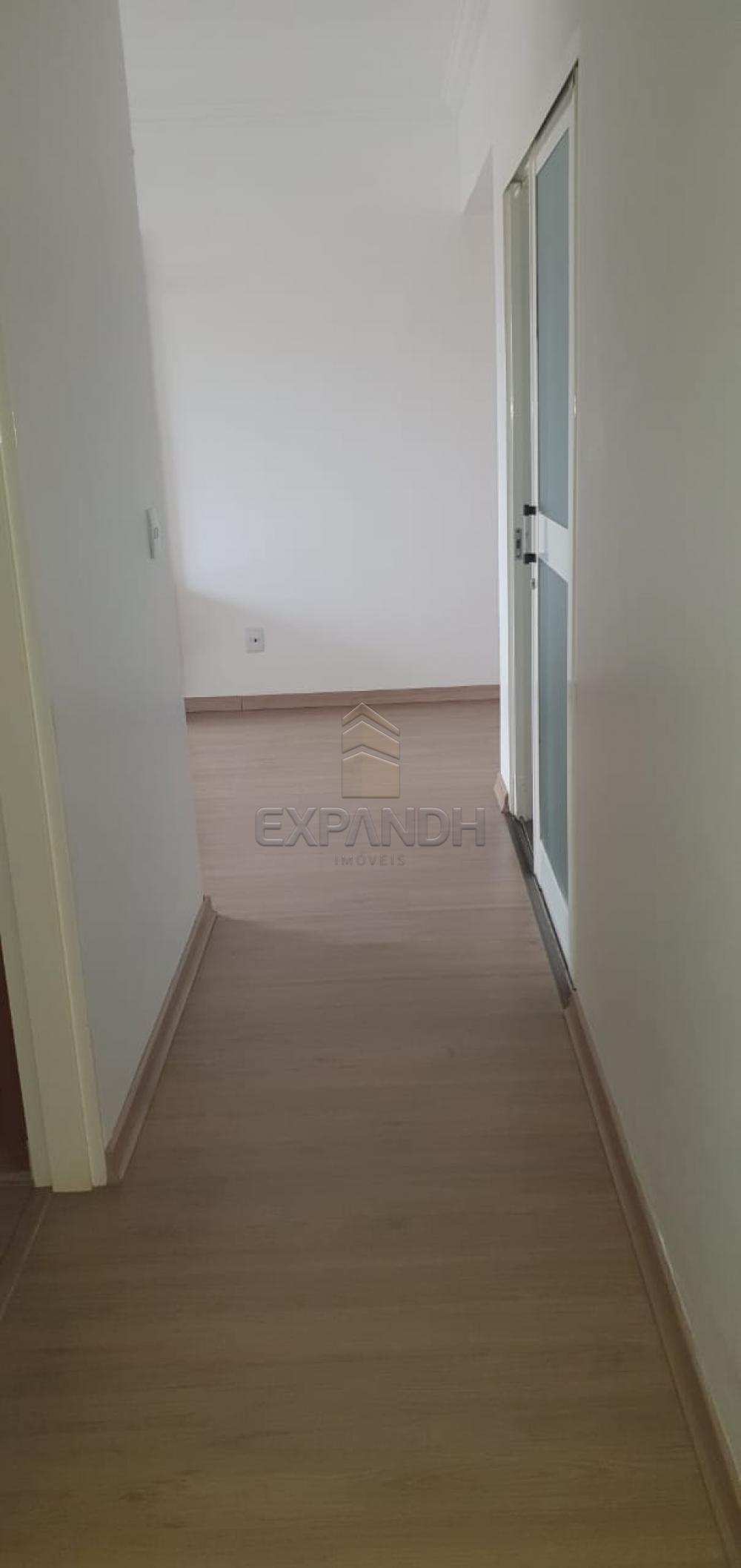 Alugar Apartamentos / Padrão em Sertãozinho apenas R$ 1.100,00 - Foto 6