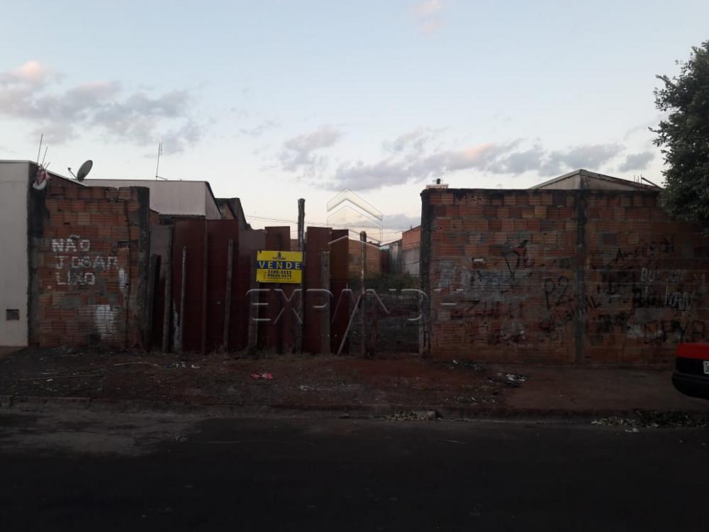Comprar Terrenos / Padrão em Sertãozinho apenas R$ 140.000,00 - Foto 1