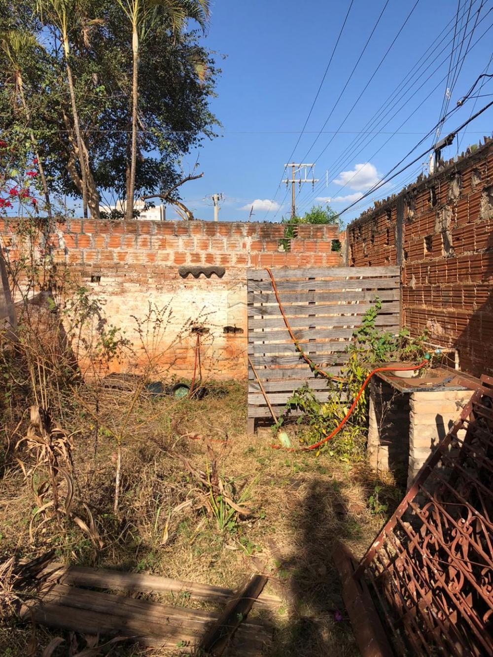 Alugar Terrenos / Área em Sertãozinho R$ 1.200,00 - Foto 2