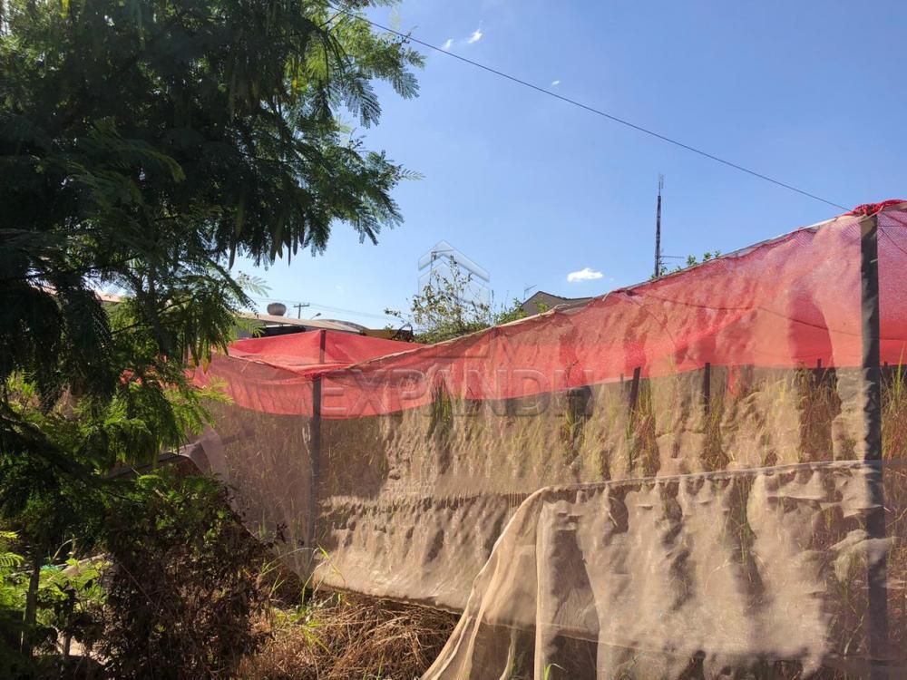 Alugar Terrenos / Área em Sertãozinho R$ 1.200,00 - Foto 3
