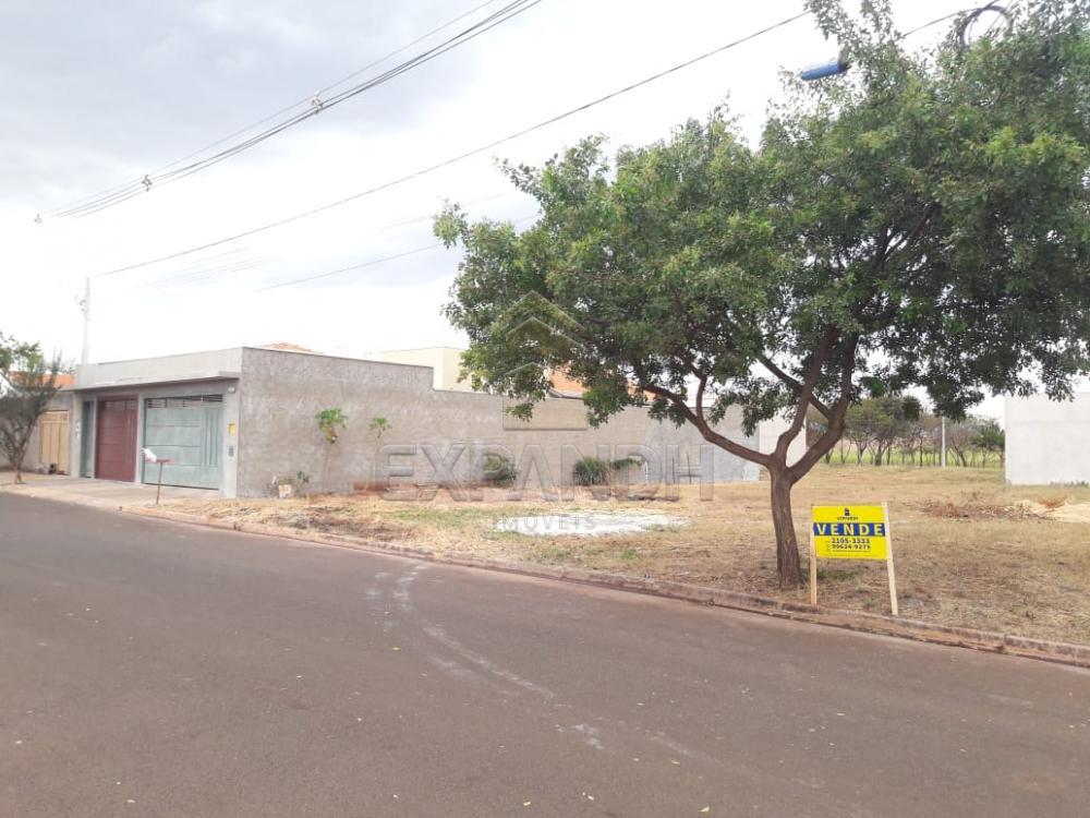 Comprar Terrenos / Padrão em Sertãozinho apenas R$ 90.000,00 - Foto 3