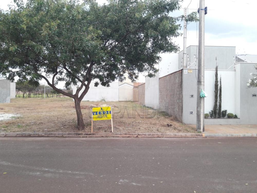 Comprar Terrenos / Padrão em Sertãozinho apenas R$ 90.000,00 - Foto 1