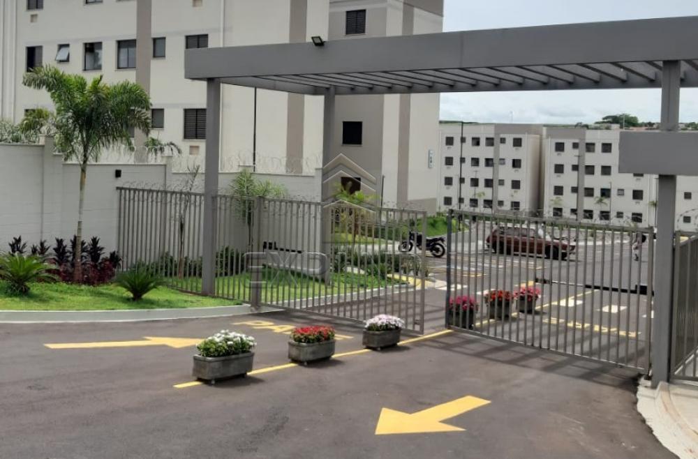 Alugar Apartamentos / Padrão em Sertãozinho apenas R$ 450,00 - Foto 2