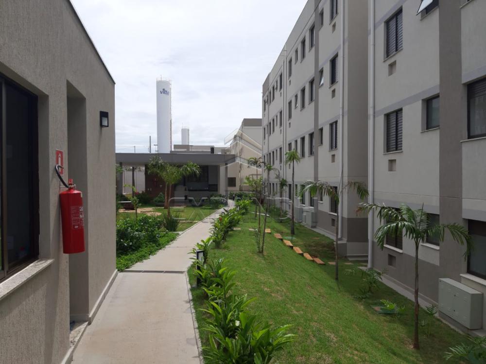 Alugar Apartamentos / Padrão em Sertãozinho apenas R$ 450,00 - Foto 4