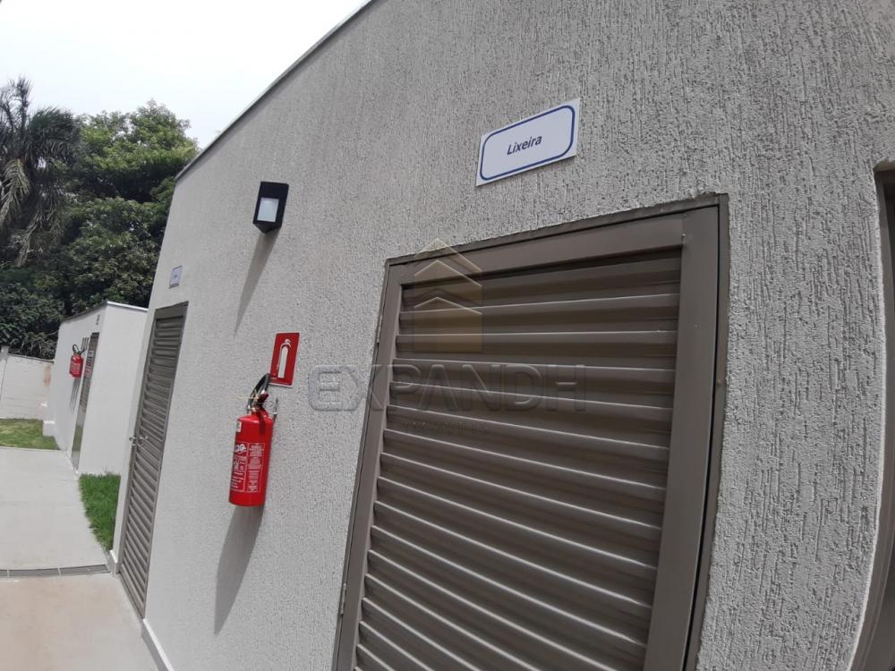 Alugar Apartamentos / Padrão em Sertãozinho apenas R$ 450,00 - Foto 6