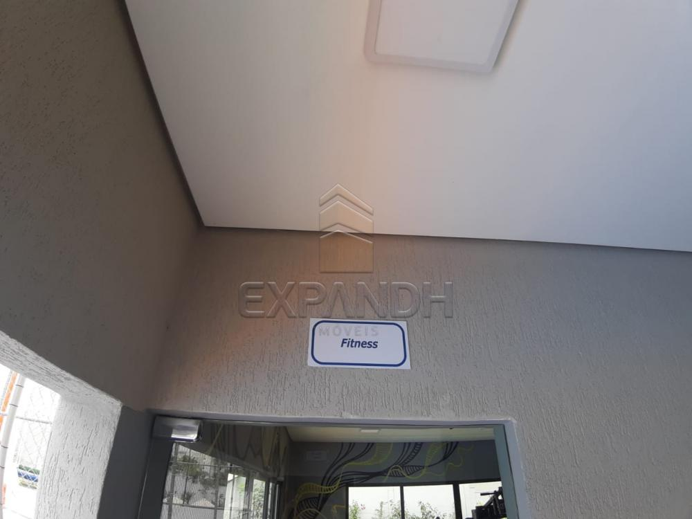 Alugar Apartamentos / Padrão em Sertãozinho apenas R$ 450,00 - Foto 7