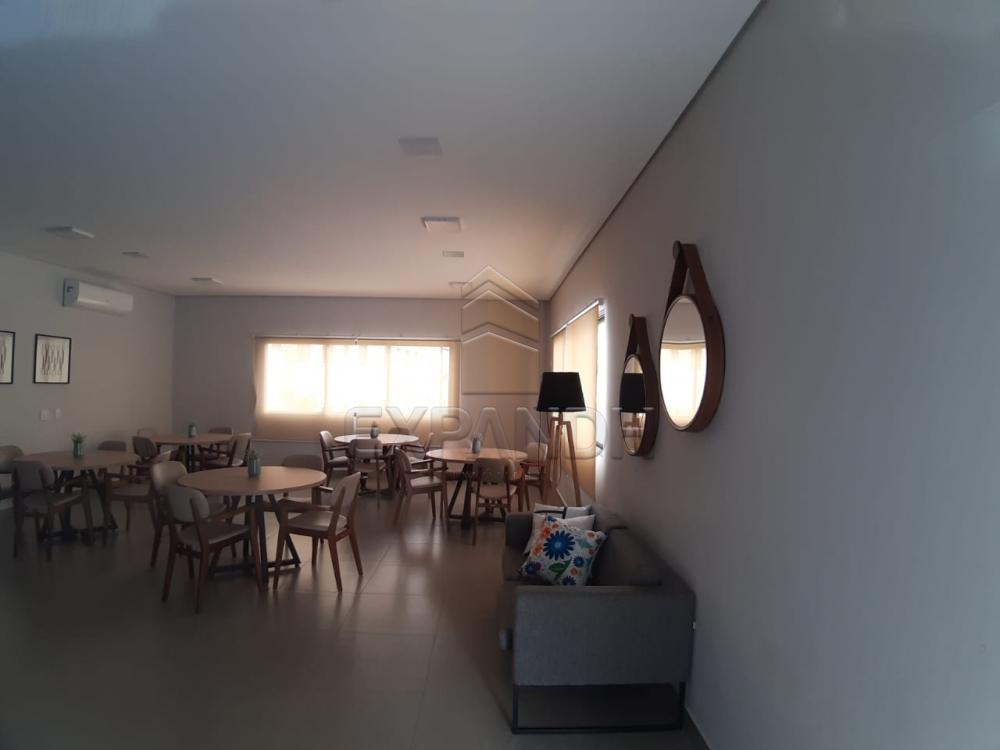 Alugar Apartamentos / Padrão em Sertãozinho apenas R$ 450,00 - Foto 10