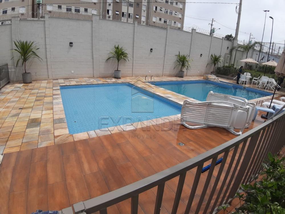 Alugar Apartamentos / Padrão em Sertãozinho apenas R$ 450,00 - Foto 14