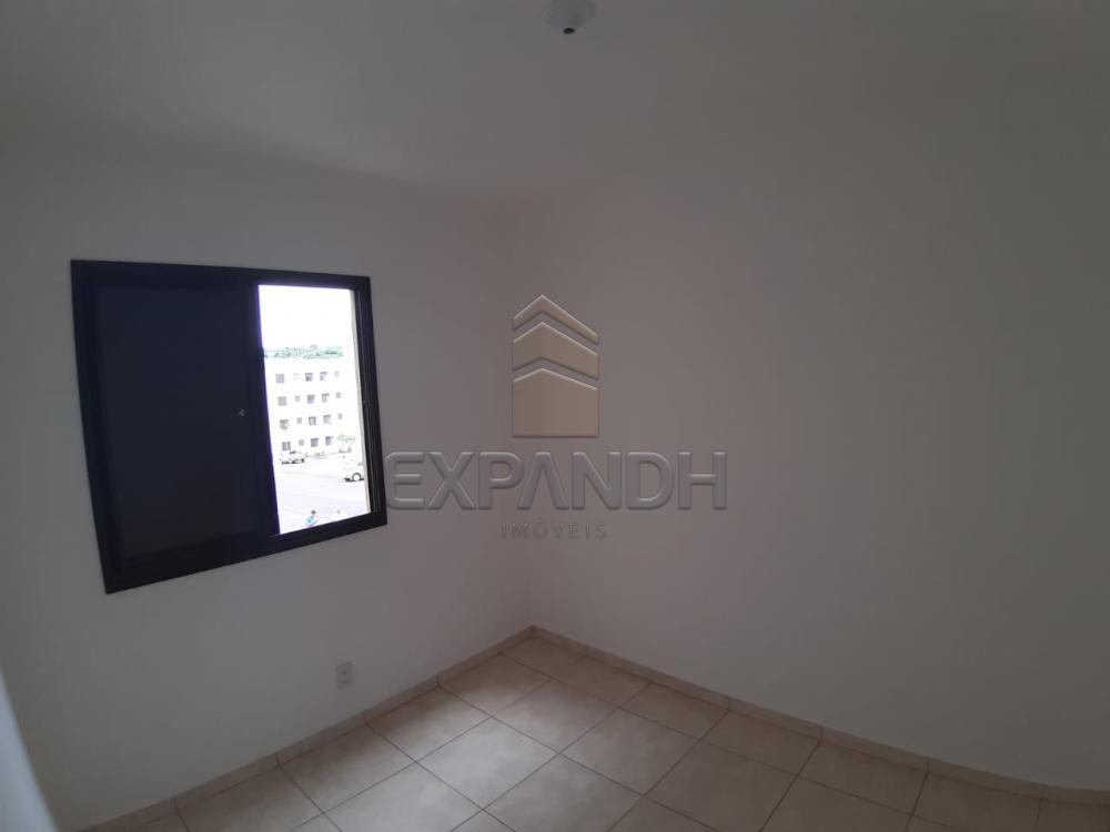 Alugar Apartamentos / Padrão em Sertãozinho apenas R$ 450,00 - Foto 24