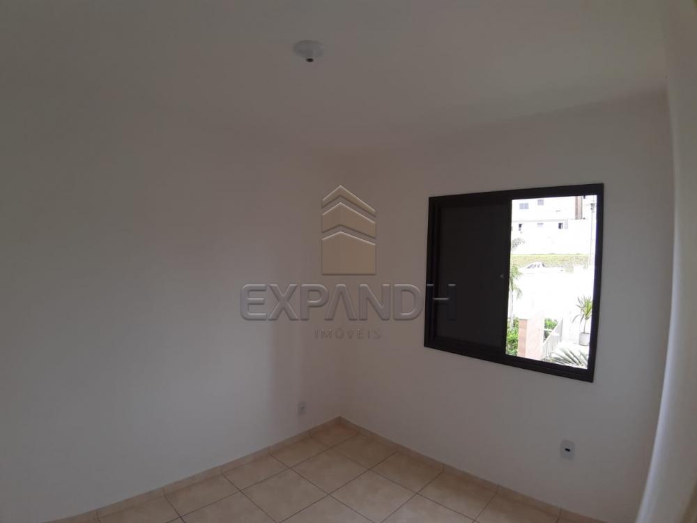 Alugar Apartamentos / Padrão em Sertãozinho apenas R$ 450,00 - Foto 26