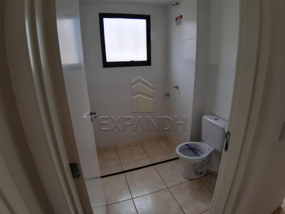 Alugar Apartamentos / Padrão em Sertãozinho apenas R$ 450,00 - Foto 30