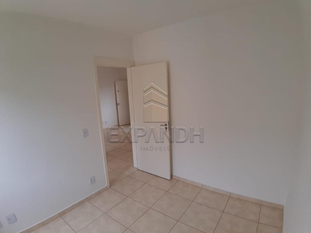 Alugar Apartamentos / Padrão em Sertãozinho apenas R$ 450,00 - Foto 31