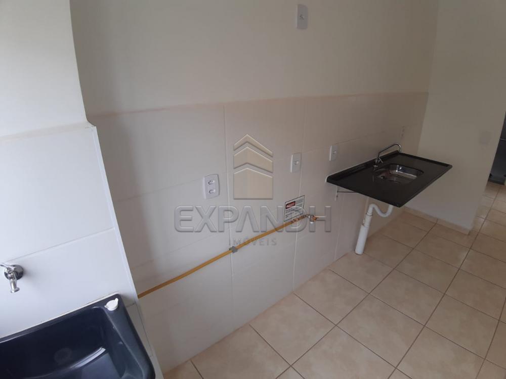 Alugar Apartamentos / Padrão em Sertãozinho apenas R$ 450,00 - Foto 32