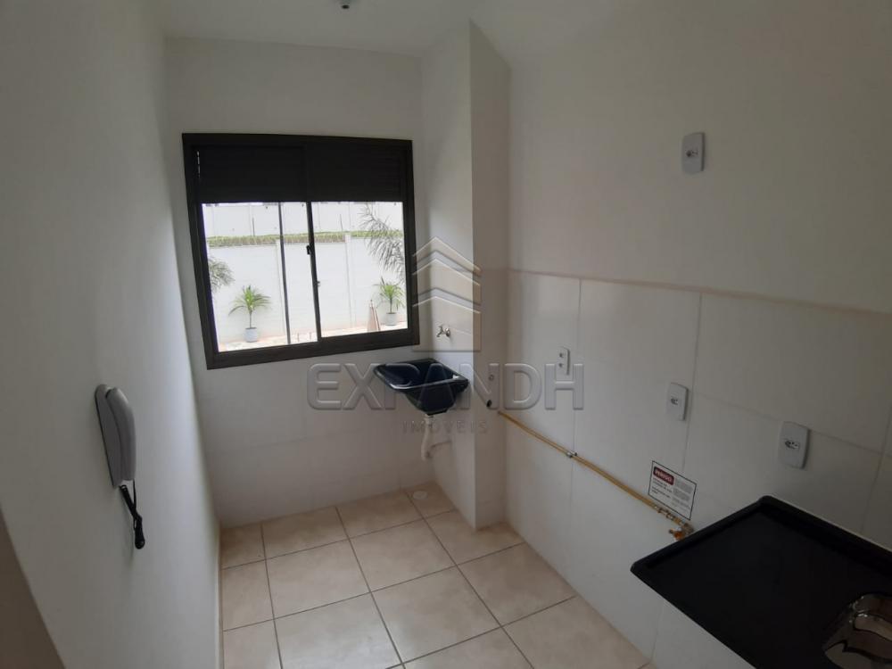Alugar Apartamentos / Padrão em Sertãozinho apenas R$ 450,00 - Foto 33