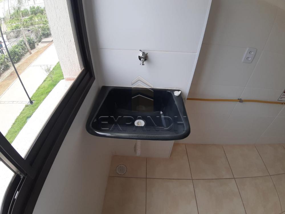 Alugar Apartamentos / Padrão em Sertãozinho apenas R$ 450,00 - Foto 35