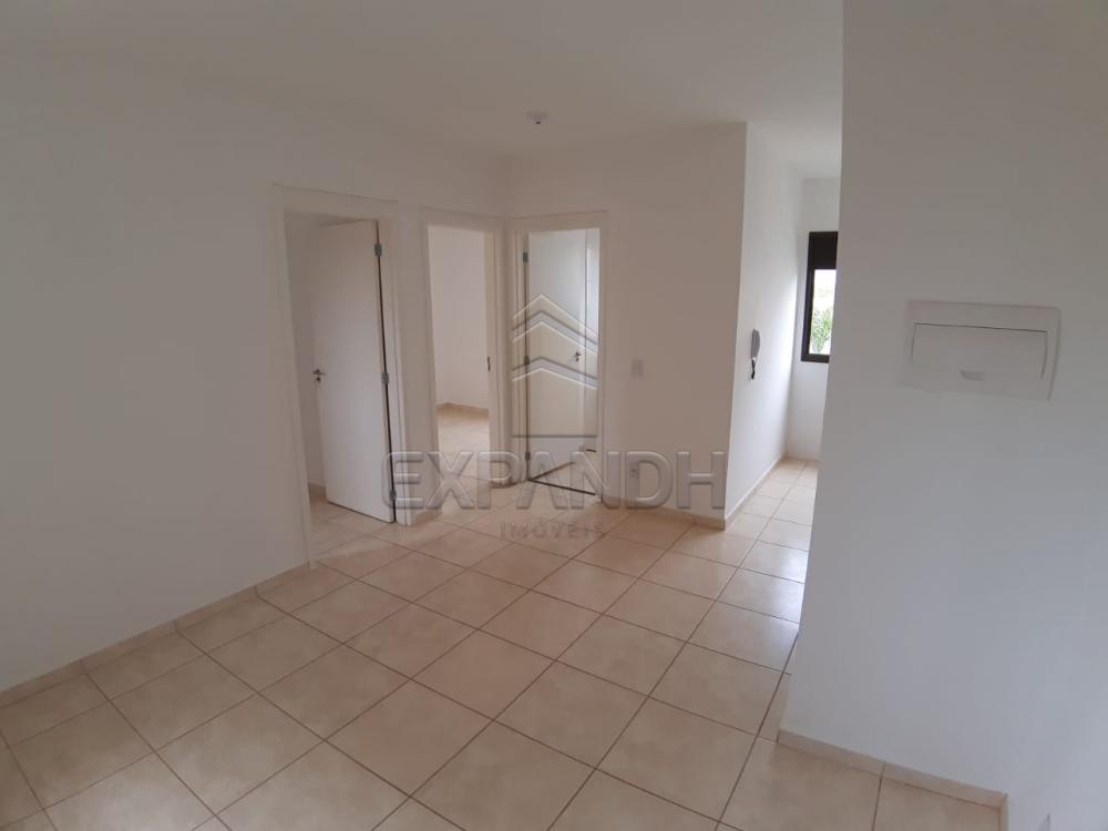 Alugar Apartamentos / Padrão em Sertãozinho apenas R$ 450,00 - Foto 36