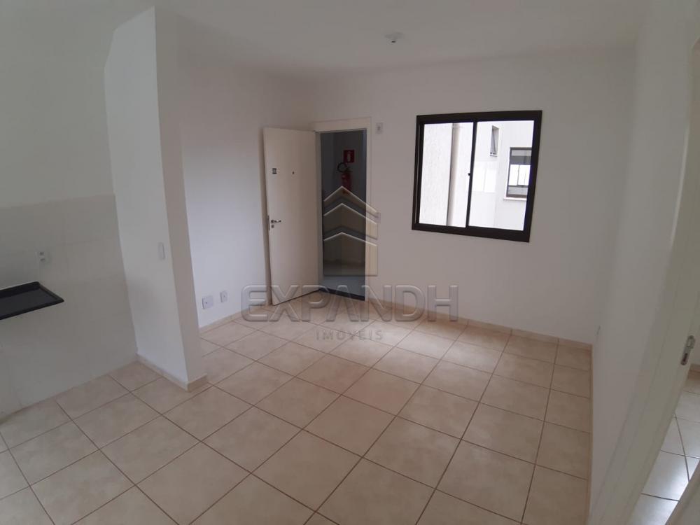 Alugar Apartamentos / Padrão em Sertãozinho apenas R$ 450,00 - Foto 37